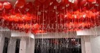 Balony helowe w siedzibie firmy.