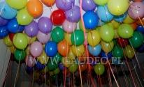 Balony z helem czekają na przygarnięcie.
