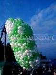 Biało zielone balony z helem przygotowane do wypuszczenia.