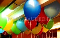 Balony z helem pod sufitem firmy.
