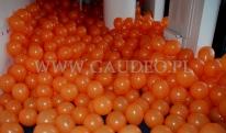Balony na patyczkach czekają na rozdanie.