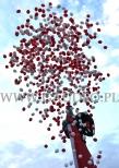 Wypuszczanie balonów z helem na obchodach Święta Niepodległości.