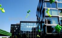 Balonowe psy latają przed biurowcami.