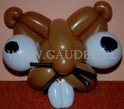 Szczur skręcony z balonów.