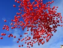 1000 balonów z helem odlatuje po wypuszczeniu.