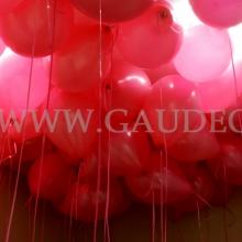 Balony z helem w warszawskim biurze firmy Novartis